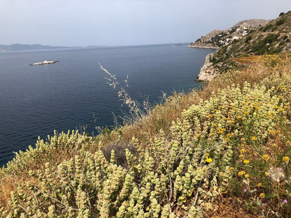 Egejas jūra